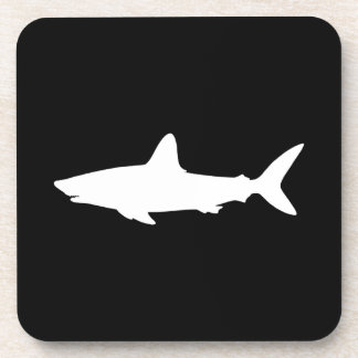 Swimming Shark Coaster
