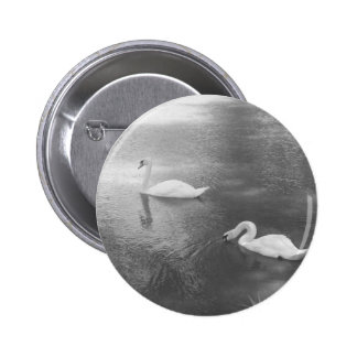 Swimming Swans Button