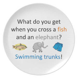 Swimming Trunks Joke Dinner Plates