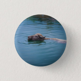 Swimming Water Buffalo 1 Inch Round Button