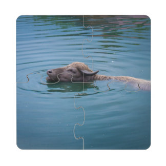 Swimming Water Buffalo Puzzle Coaster