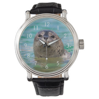 Swimming with a baby seal wristwatch