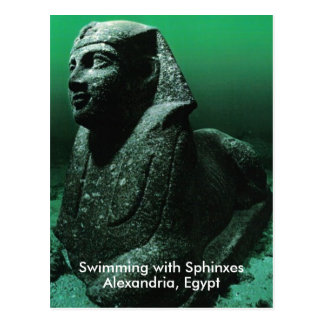 Swimming with Sphinxes Postcard