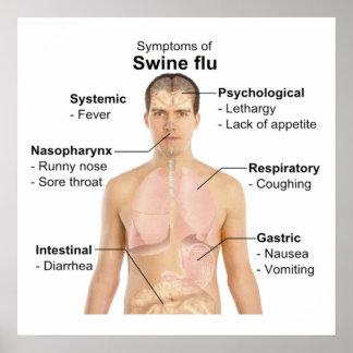 Swine Flu Poster