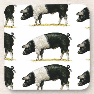swine in a row coaster