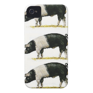 swine in a row iPhone 4 Case-Mate cases