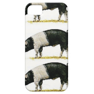 swine in a row iPhone 5 cases