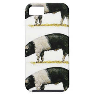 swine in a row iPhone 5 cover