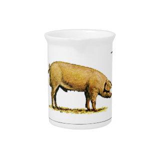 swine industry baby pitcher