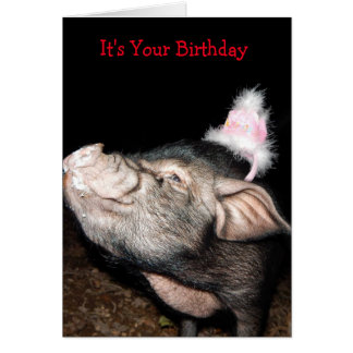 Swine Time, Pig Birthday Card