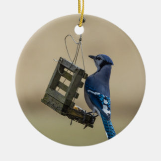 Swinging Blue Jay Ceramic Ornament