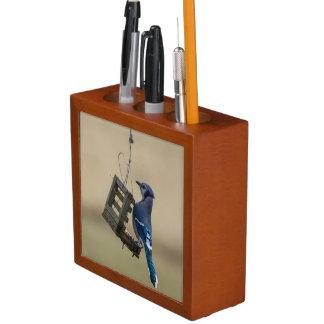 Swinging Blue Jay Desk Organizer
