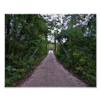 Swinging Bridge 2 Photo Print