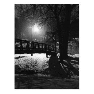 Swinging Bridge Postcard