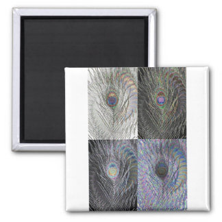 Swirling Peacock Feather Medley Square Magnet