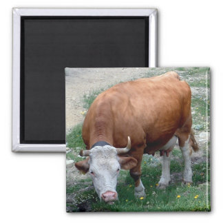 Swiss Alps cow magnet