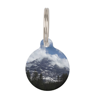 Swiss Alps Pet Tag