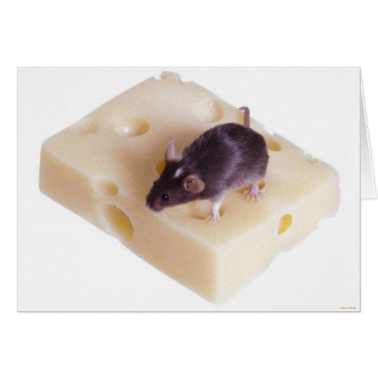 Swiss Cheese Mouse Card