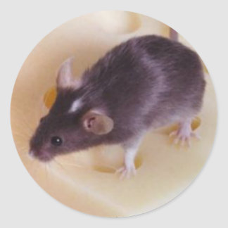 Swiss Cheese Mouse Sticker