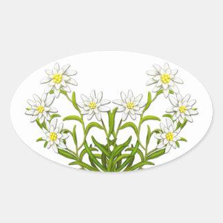 Swiss Edelweiss Flowers Sticker