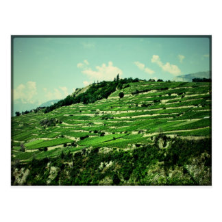 Swiss Hillsides Postcard