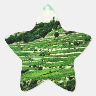 Swiss Hillsides Star Sticker