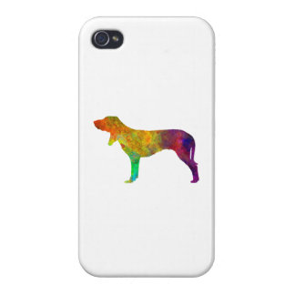 Swiss Hound in watercolor iPhone 4/4S Covers