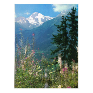 Switzerland, Jungfrau region in springtime Postcard