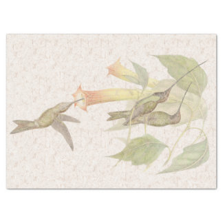 Sword-billed Hummingbird Birds Floral Tissue Paper