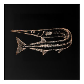 Swordfish Ocean Life Water Animials Black Rose Acrylic Wall Art