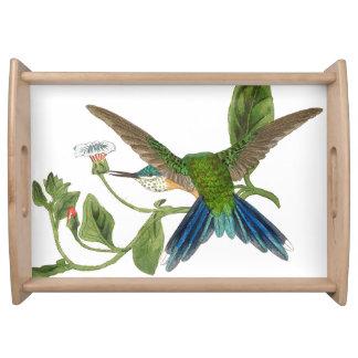 Swordtail Hummingbird Bird Flowers Serving Tray