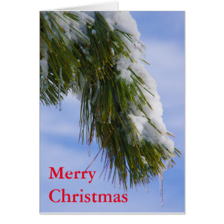 Swowy bough with icicles card