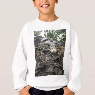 Sycamore Tower Sweatshirt