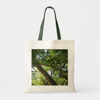 Sycamore Tree Green Nature Photography Tote Bag