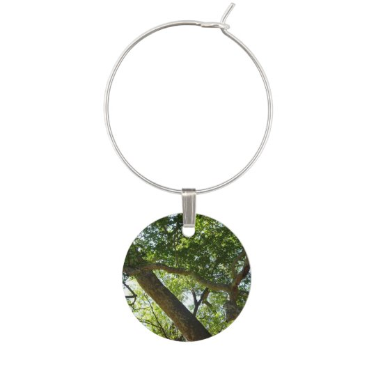Sycamore Tree Green Nature Photography Wine Glass Charm