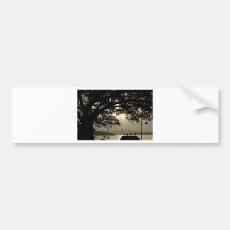 Sydney Skyline scenic view Bumper Sticker