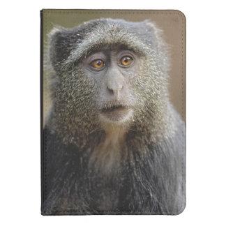 Sykes or Blue Monkey, Cercopithecus mitis, Kindle Case