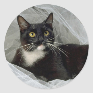 Sylvester's Boudoir Classic Round Sticker