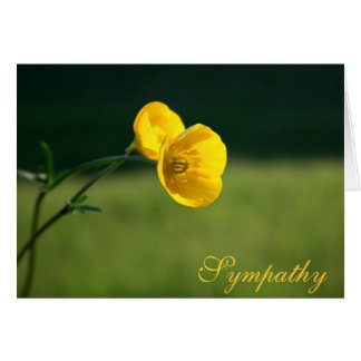 Sympathy Buttercup Design   Sorry For Your Loss Greeting Card