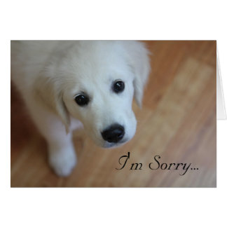 Sympathy card, I'm Sorry for... Card