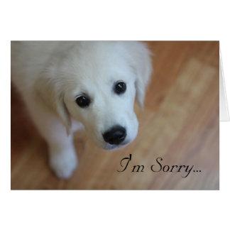Sympathy card, I'm Sorry for... Greeting Card