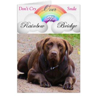 Sympathy Cards for Dog j/ labdor retrivers lovers