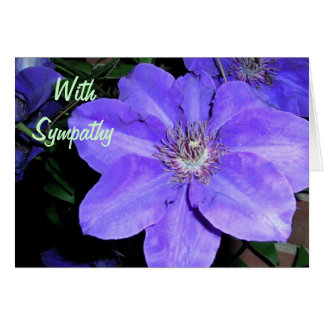 Sympathy Clematis Note Card