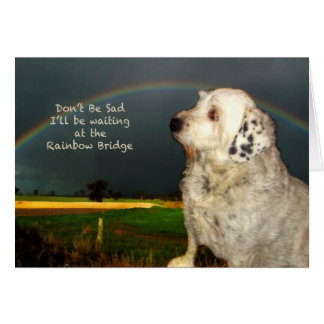 Sympathy for loss of pet dog card
