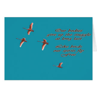 Sympathy-May You Find Comfort Trupeter Swans Card