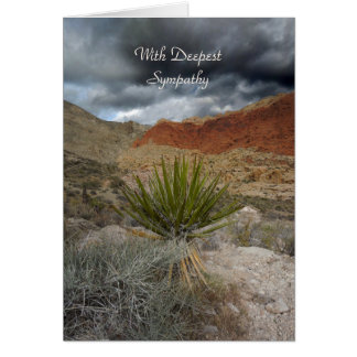 Sympathy, Mountain Storm with Yucca Card
