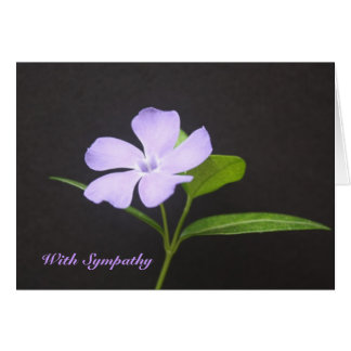 Sympathy Periwinkle Greeting Card