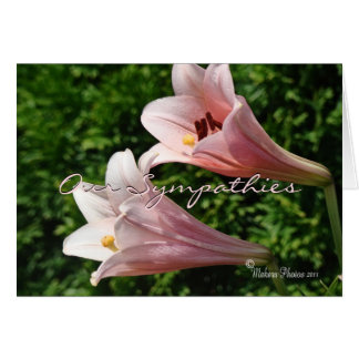 Sympathy- Pk Trumpet Lily- customize any occasion Card