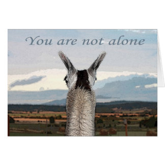 Sympathy: You Are Not Alone Llama Greeting Card