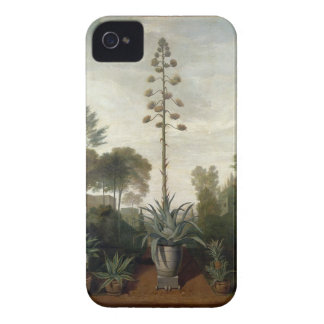 T33047 A Botanical Garden Case-Mate iPhone 4 Case